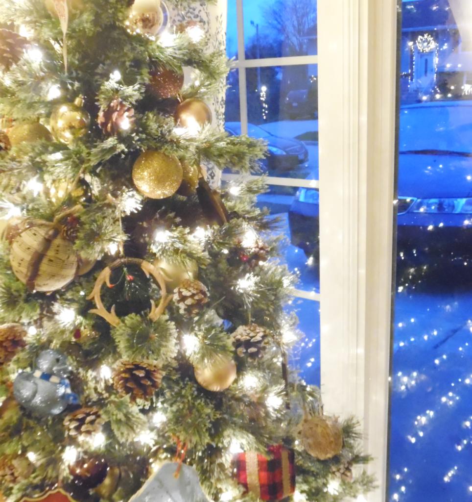 Christmas Recap, 2015