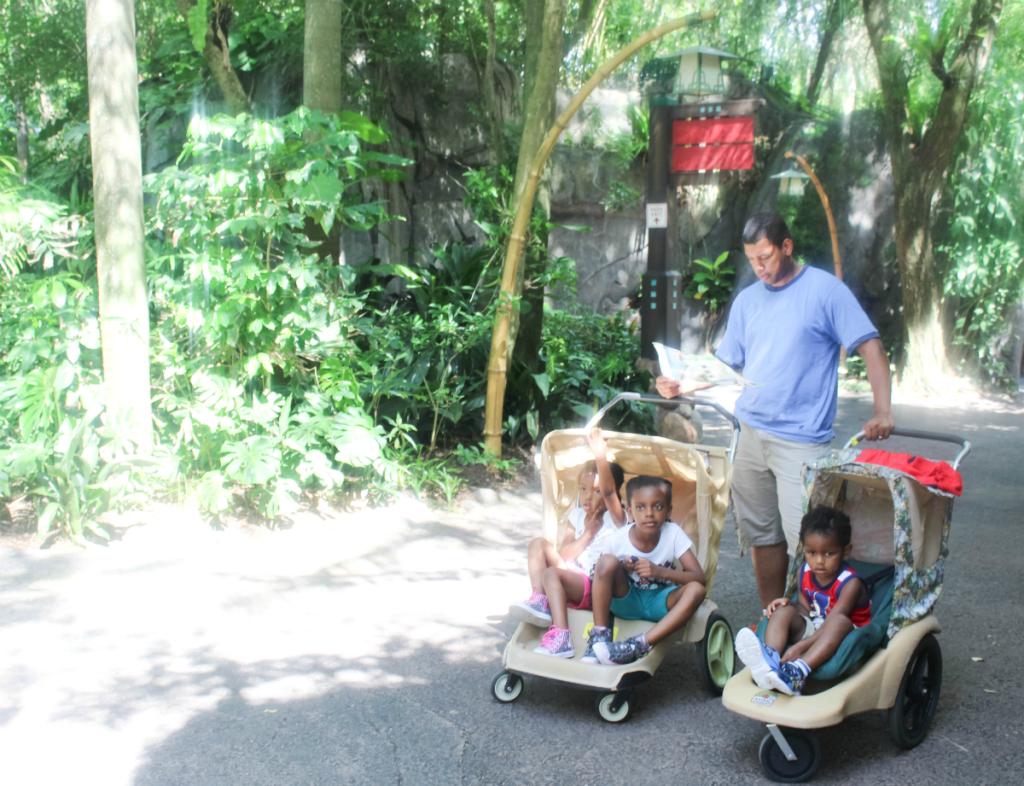 Orlando Vacation - Disney - Animal Kindgom - At Home With Zan