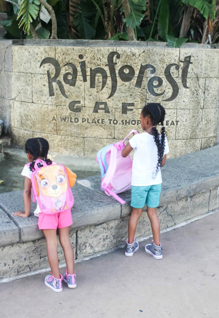 Orlando Vacation - Disney - Animal Kingdom - Rainforest Cafe - At Home With Zan