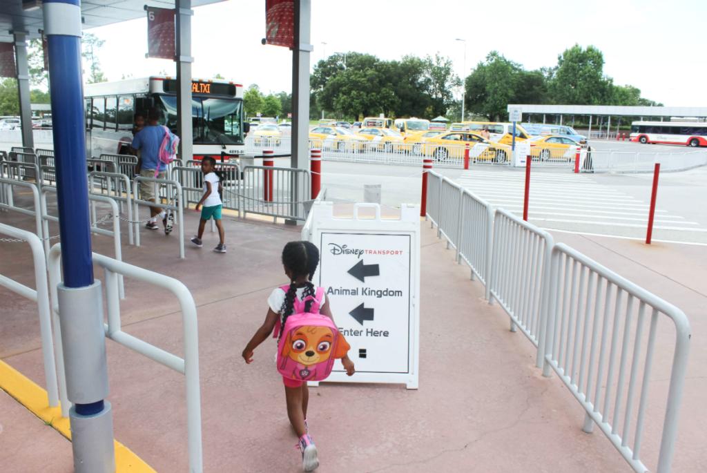 Orlando Vacation - Disney - Disney Park Animal Kindgom - At Home With Zan