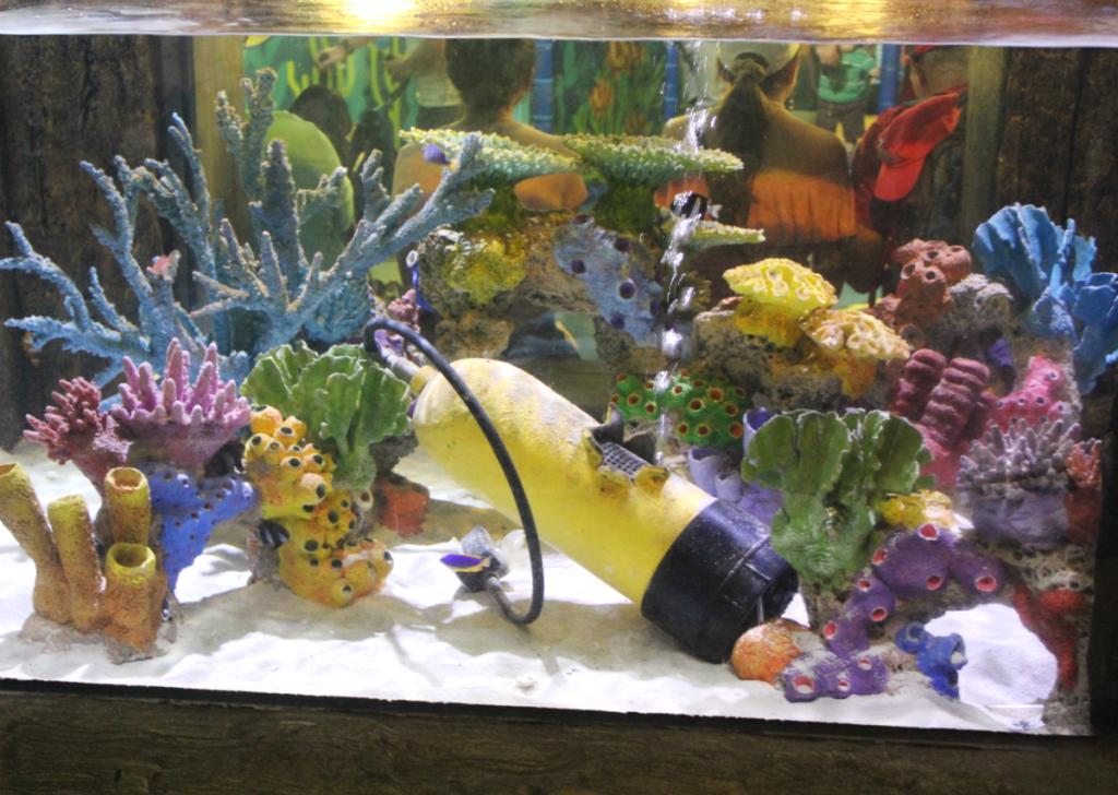 Orlando Vacation - Sea Life Aquarium - Beautiful Reef - At Home With Zan