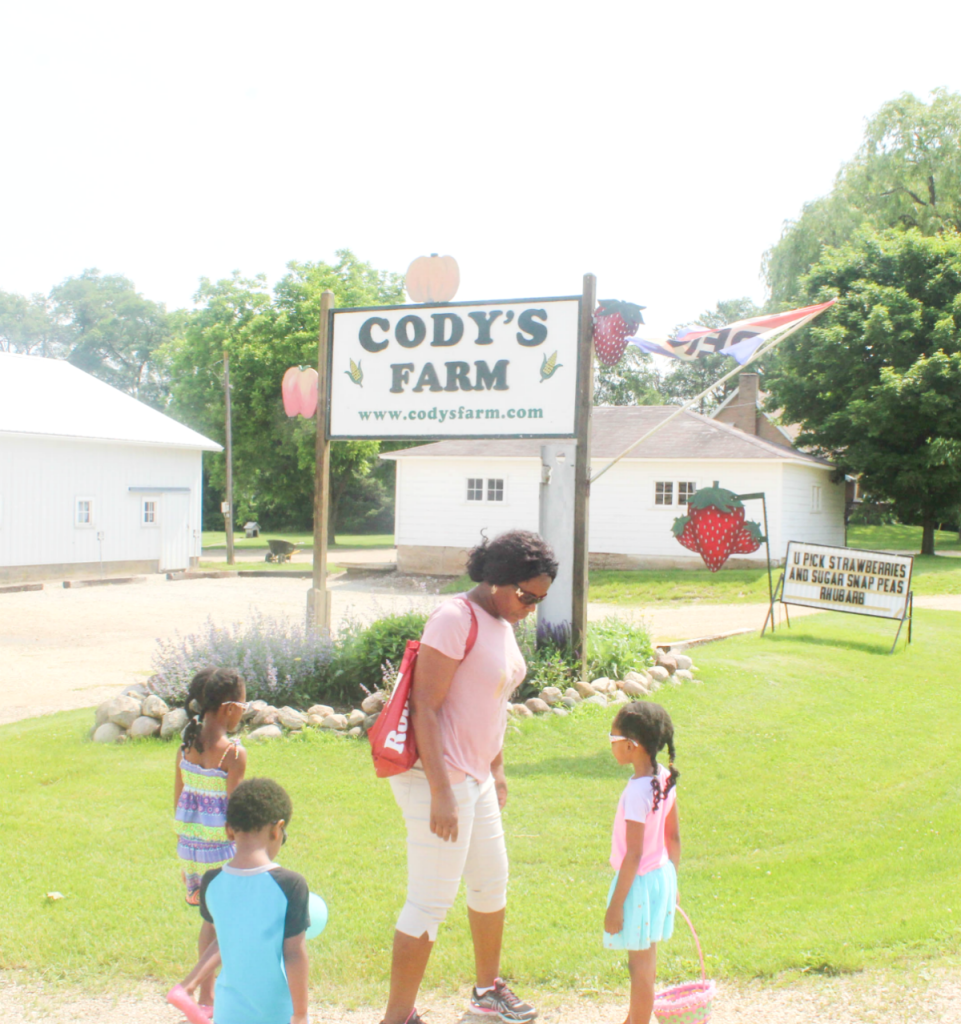 Trip to the Strawberry Farm - Family Outing - At Home With Zan