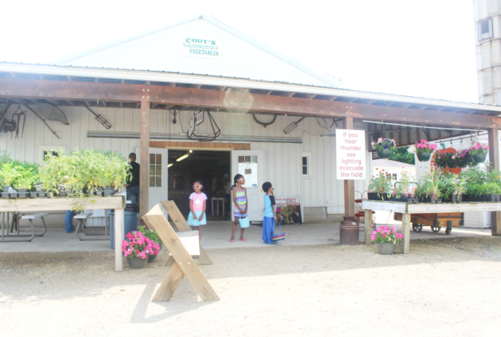 Trip to the Strawberry Farm - Family Outing - From At Home With Zan