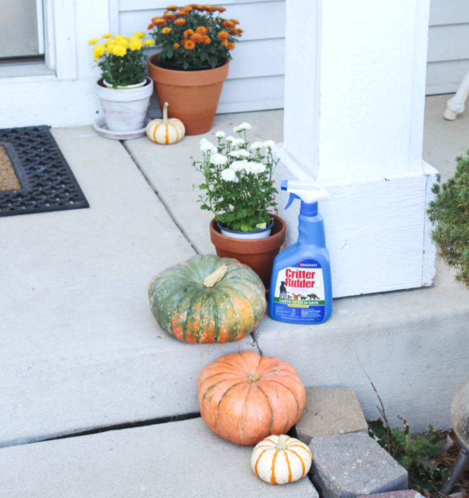 Fall Front Porch - With Critter Ridder - At Home With Zan